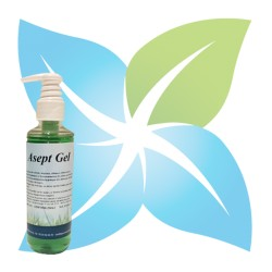 ASEPT GEL  (Flacon 250 ml)